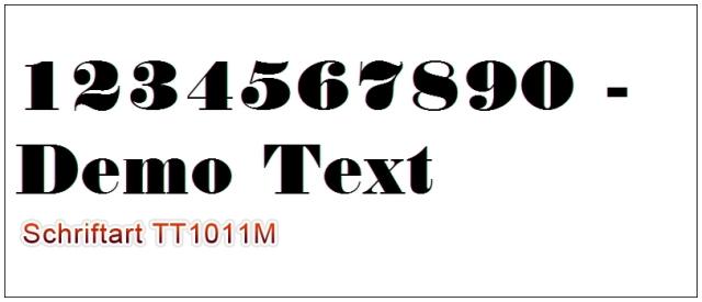 TT1011M_.jpg